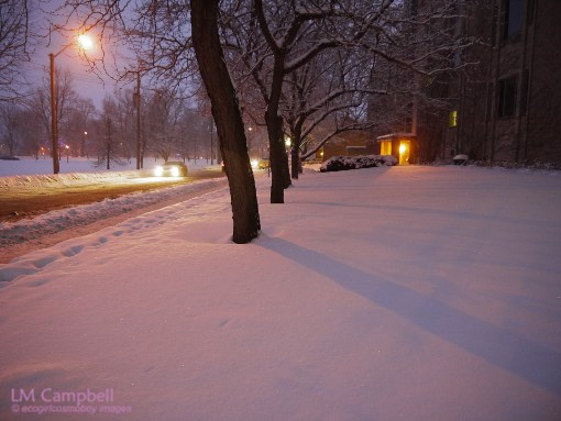 Snowy night on Barrie Street by Queen's University