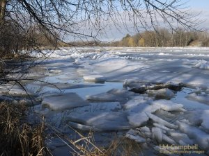 Spring ice break-up in river
