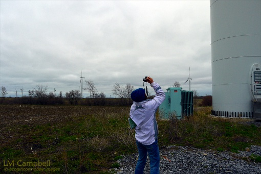 An IJNR fellow photographing a wind turbine tower