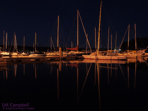 Reflections at the Armdale Marina