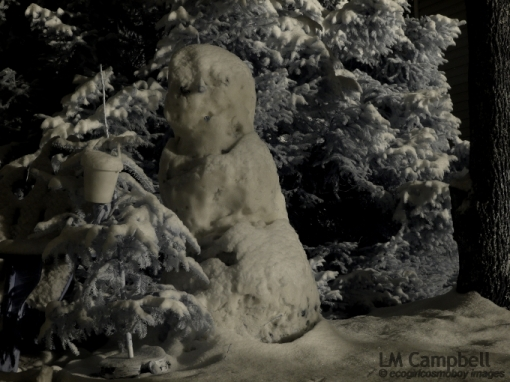 Snowman between two conifers