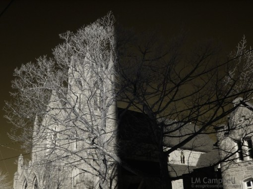 Moncton Church & Tree shadowed by radio tower