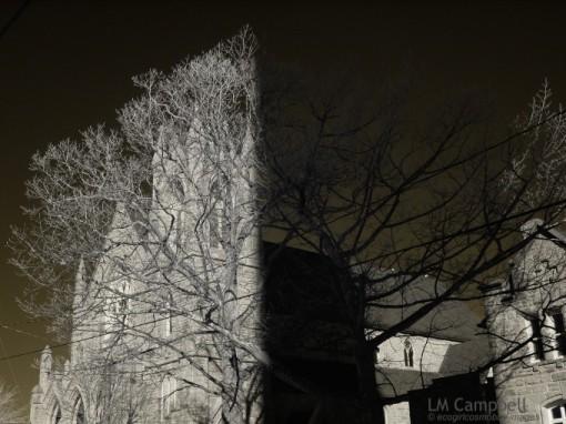 Moncton Church & Tree shadowed by radio tower