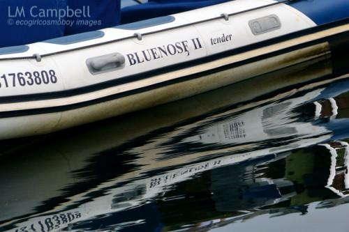LB1_Bluenosetender_500